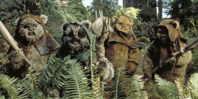 Meet the Party: Ewoks